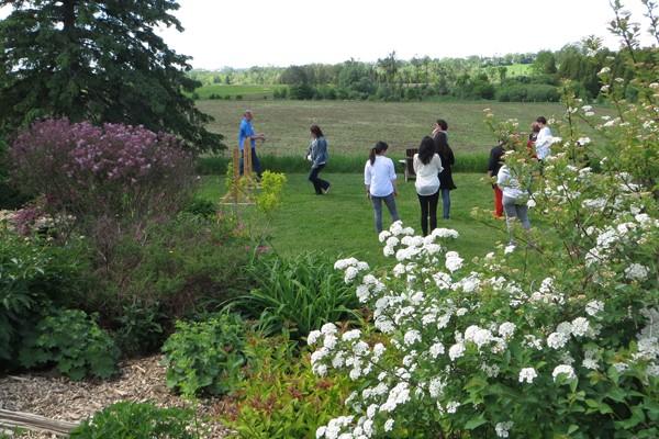 People gathering outside on grassy field
