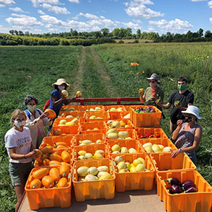 A trailer full of harvested squash, with the farm team standing around the trailer.